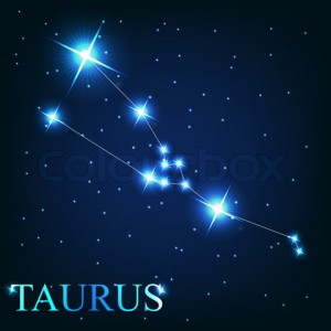 vector of the taurus zodiac sign of the beautiful bright stars o
