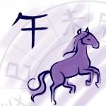 Horse Chinese Zodiac